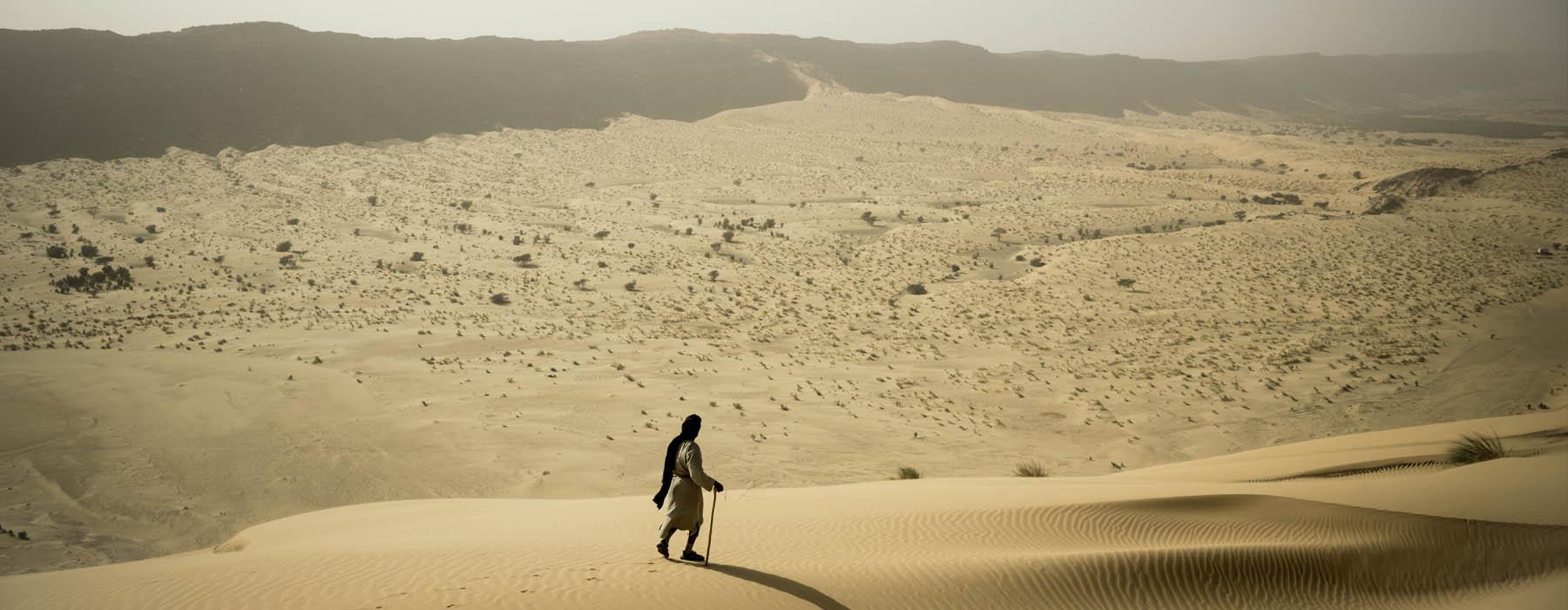Accueil > Destination > desert