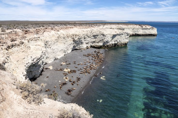 Puerto Madryn - Argentine