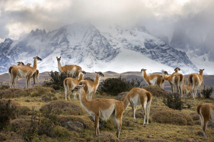 Argentine & Chili - De l'Atlantique au Pacifique