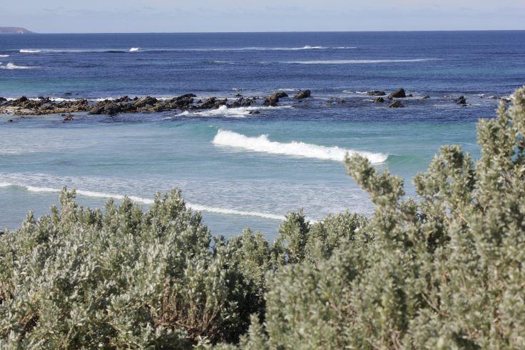 Kangaroo Island - Australie du Sud - Australie