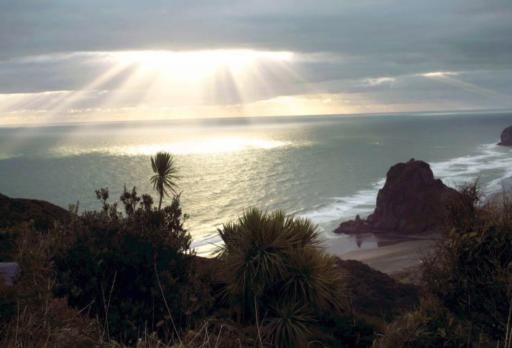 Région d'Auckland - Ile du Nord - Nouvelle-Zélande