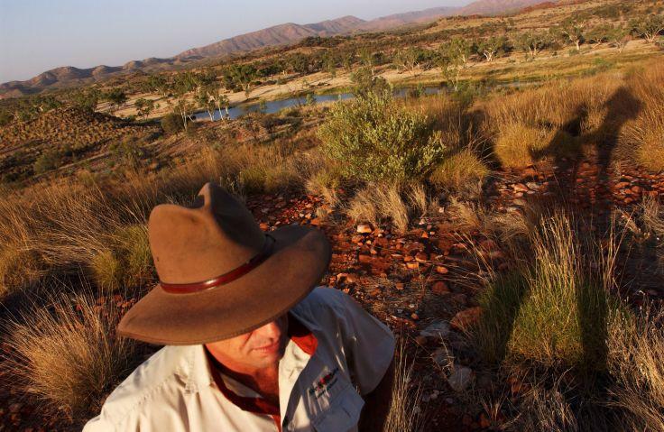 Kings Canyon - Parc National Watarrka - Outback - Australie