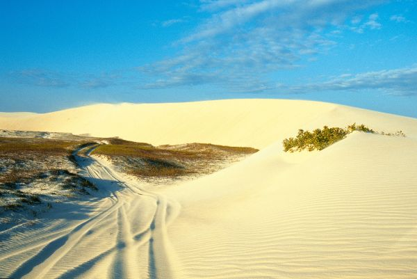Dunes et plages du Nordeste