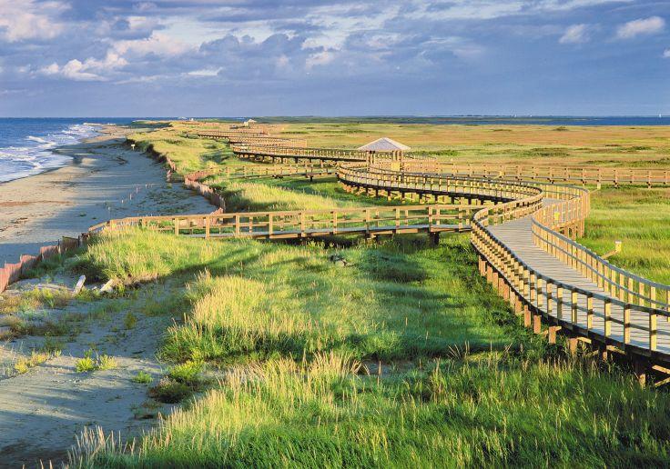 Le Nouveau Brunswick en été – Nature sauvage entre terre et mer