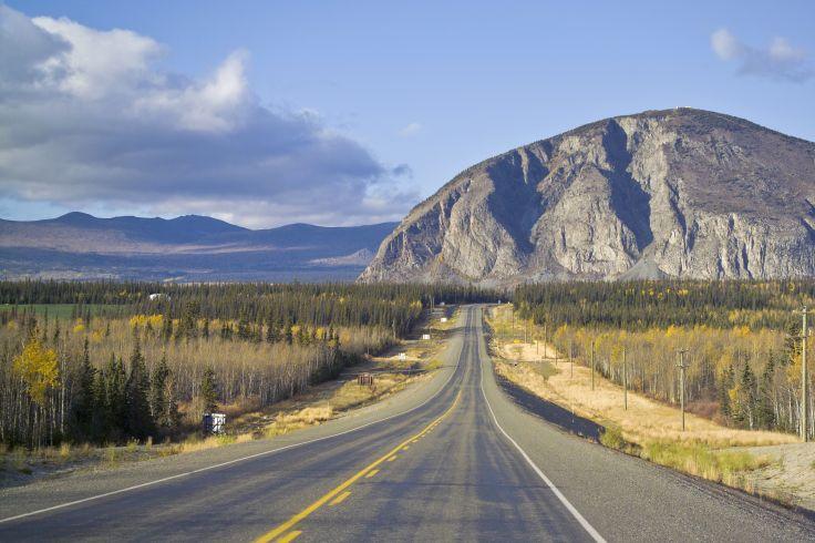 Route de l'Alaska - Haines Junction - Yukon - Canada