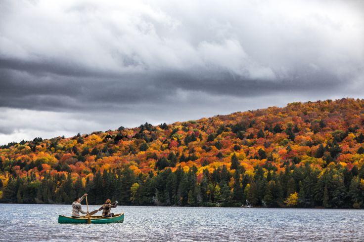 Parc provincial Algonquin - Ontario - Canada