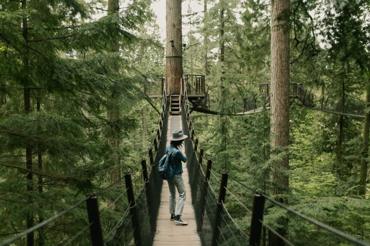 Capilano Suspension Bridge - Vancouver - Canada