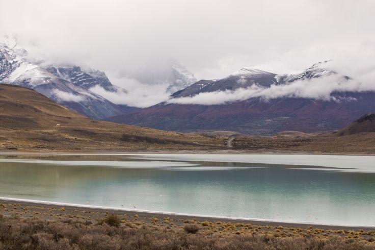 Laguna Amarga - Parc national Torres del Paine - Patagonie - Chili