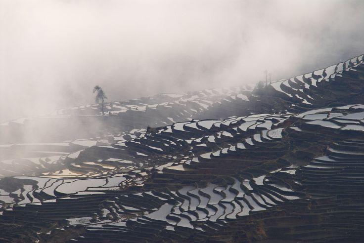 Le Yunnan - Sur la route du thé, des chevaux et du Tibet