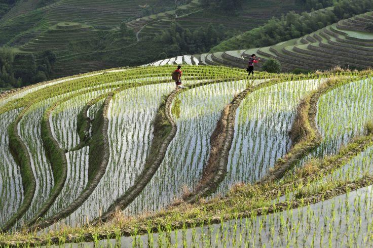 Longsheng - Guangxi - Chine