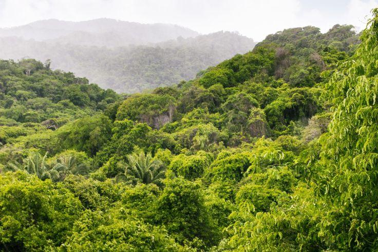 Parc Tayrona - Sierra Nevada de Santa Marta - Colombie