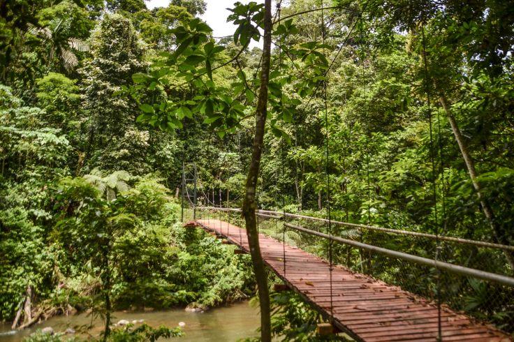 Puerto Viejo de Talamanca - Province de Limón - Costa Rica