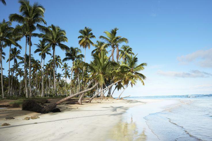 Las Ballenas - Péninsule de Samana - République Dominicaine