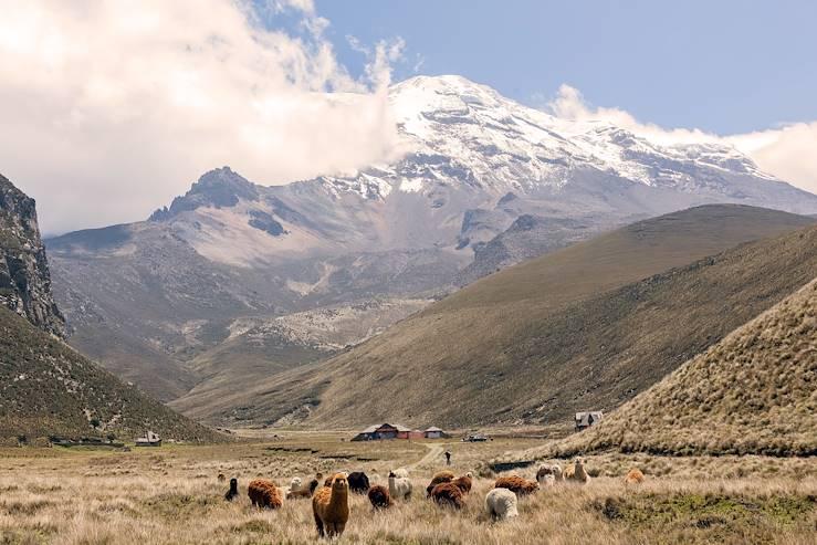 Chimborazo - Equateur