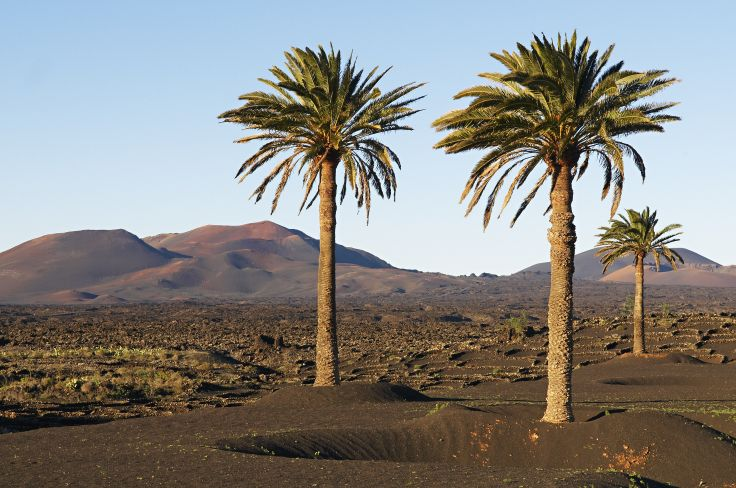 Combiné Tenerife - Lanzarote en hôtels de charme