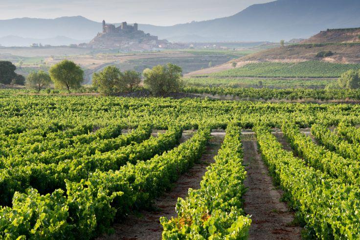 San Vicente de la Sonsierra - La Rioja - Espagne