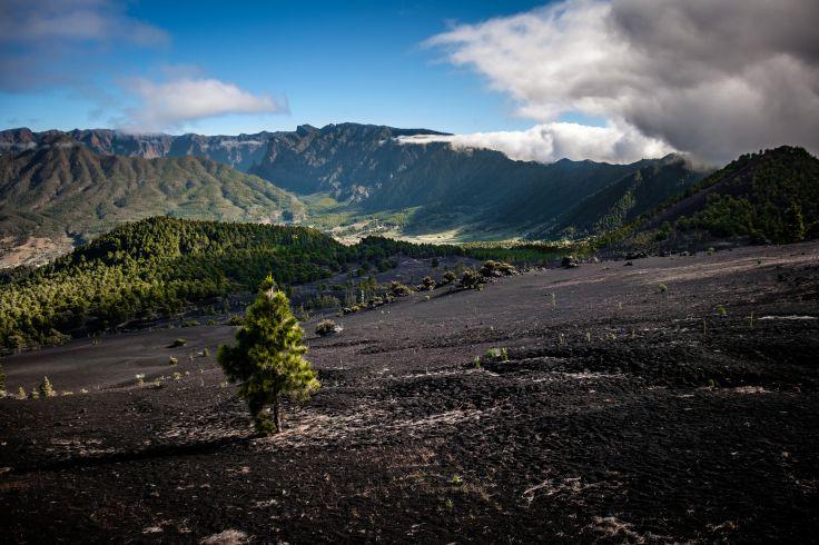 Cumbre Nueva - Route des Volcans - La Palma - Iles Canaries