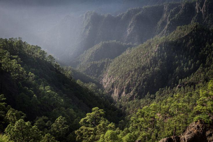 Parc national de la Caldeira de Taburiente - La Palma - Iles Canaries