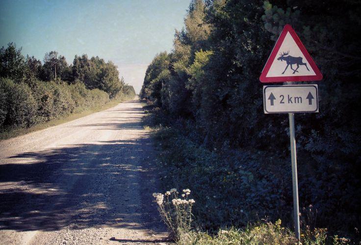 Ile de Saaremaa - Estonie
