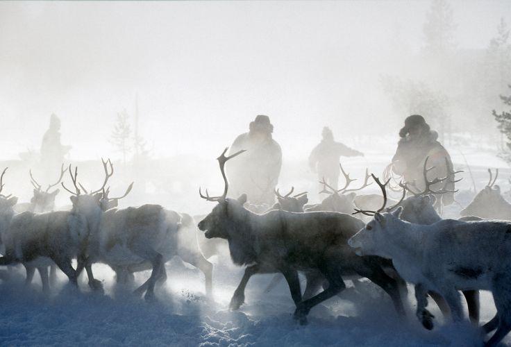A deux - Romance nordique sous les étoiles de Laponie