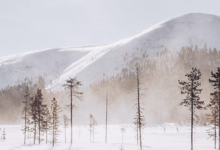 Mont Yllästunturi - Laponie - Finlande