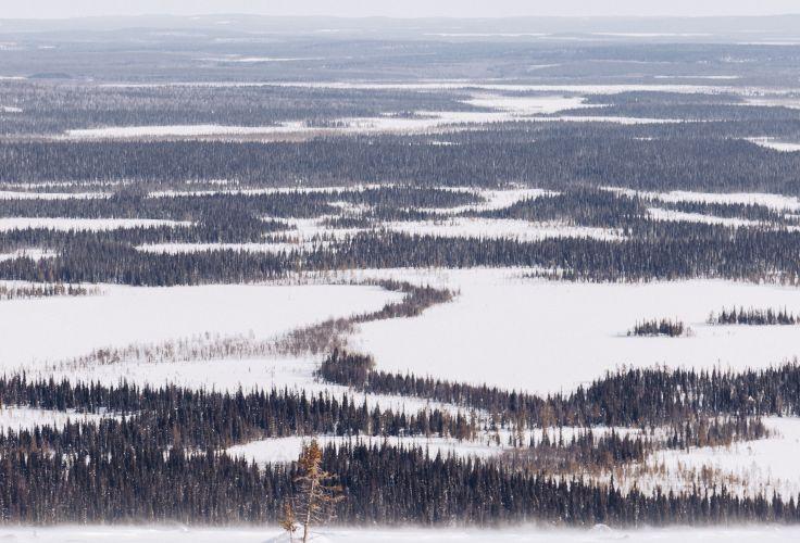 Vue depuis le Mont Kesanki - Laponie - Finlande