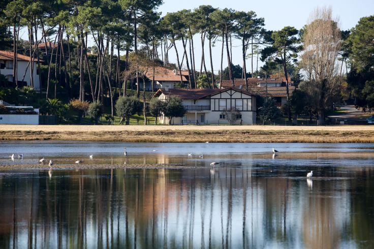 Lac d'Hossegor - France