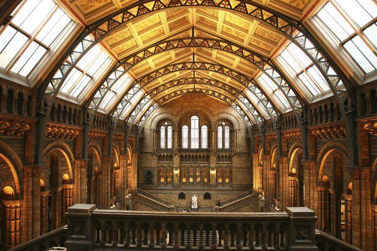 Musée d'histoire naturelle de Londres - Angleterre - Royaume-Uni
