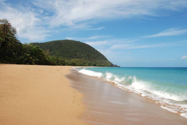 Le Caraïb Bay - Basse Terre, entre plages et forêts tropicales