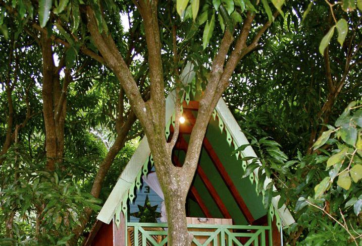 Voyage Charme En Guadeloupe A Basse Terre Tendacayou Et Jardin