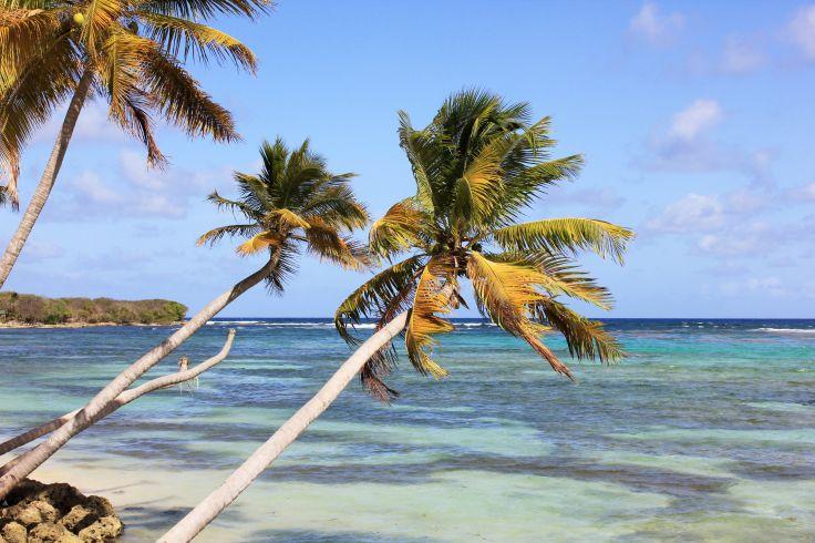 Marie-Galante - Guadeloupe