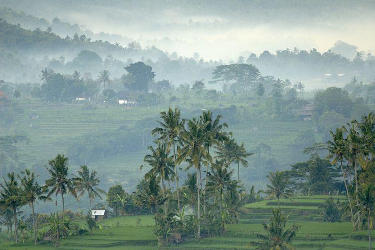 Des rizières à la plage - L'essentiel de Bali en hôtels de charme