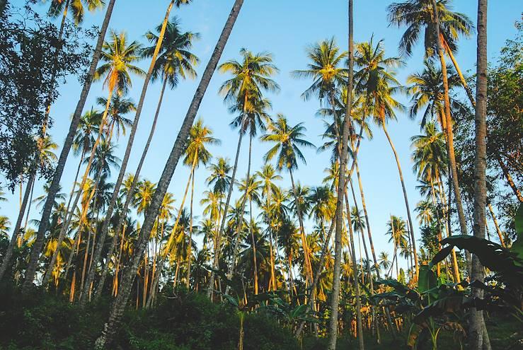 Île de Bunaken - Sulawesi - Indonésié