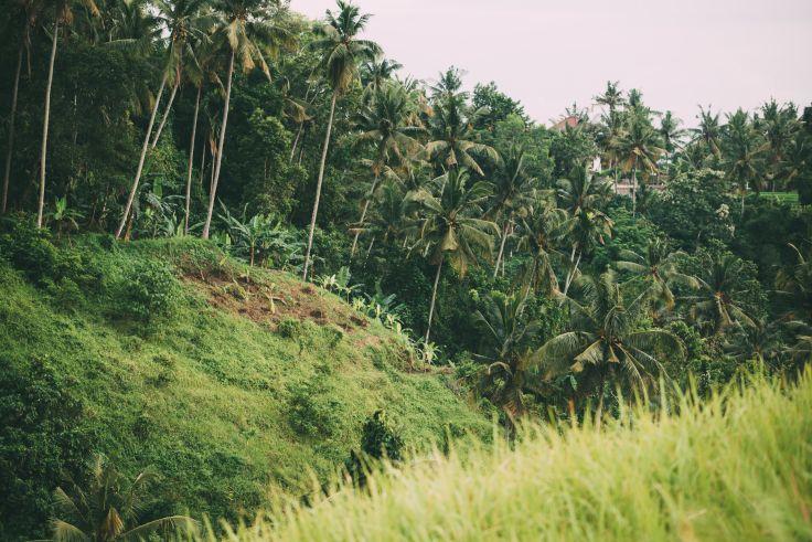 Bali - Indonésie
