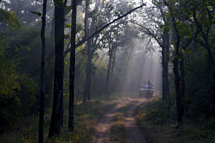 Bhandavgarh - Inde