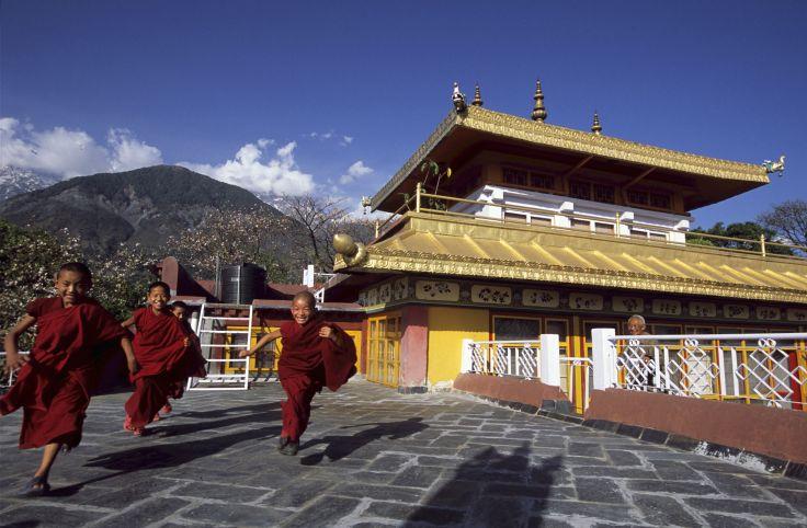 Dharamsala - Himachal Pradesh - Inde