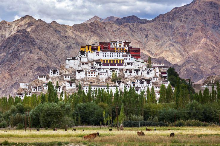 Monastère de Thiksey - Ladakh - Jammu-et-Cachemire - Inde
