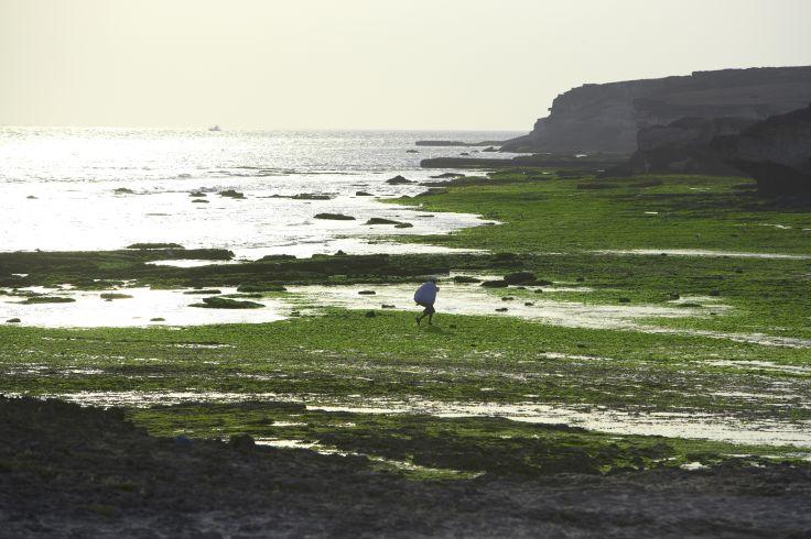 Plage de Nagoa - Ile de Diu - Inde