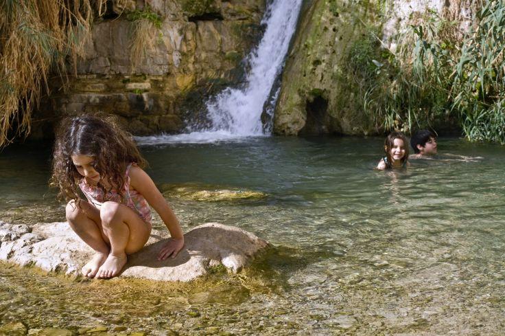 Parc National d'Ein Gedi - Israël