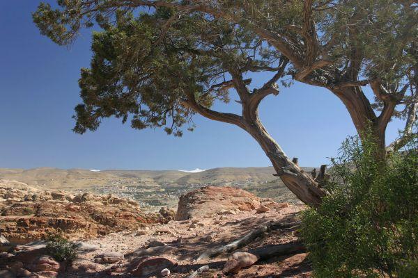 Des wadis à la mer Morte - Une Jordanie chic & nature