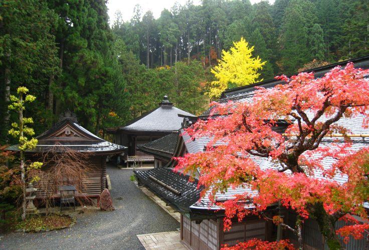 Temple Fudo-in - Mont Koya San