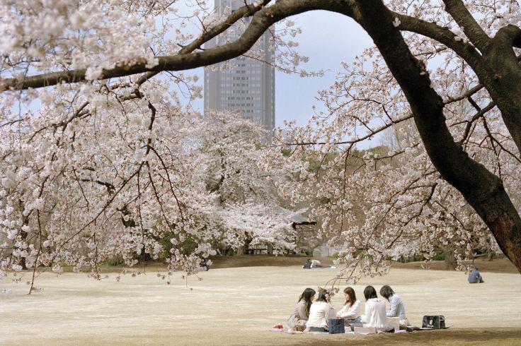 Tokyo - Une exception urbaine