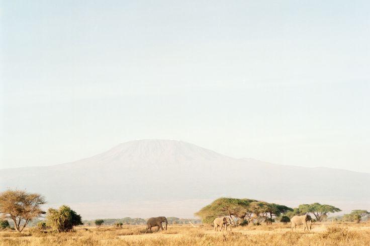 Réserve naturelle de Kimana - Kenya