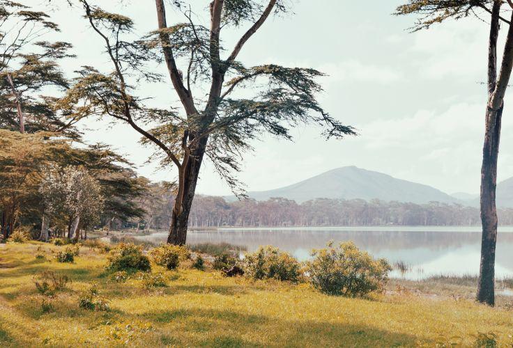 Lac Elmenteita - Kenya