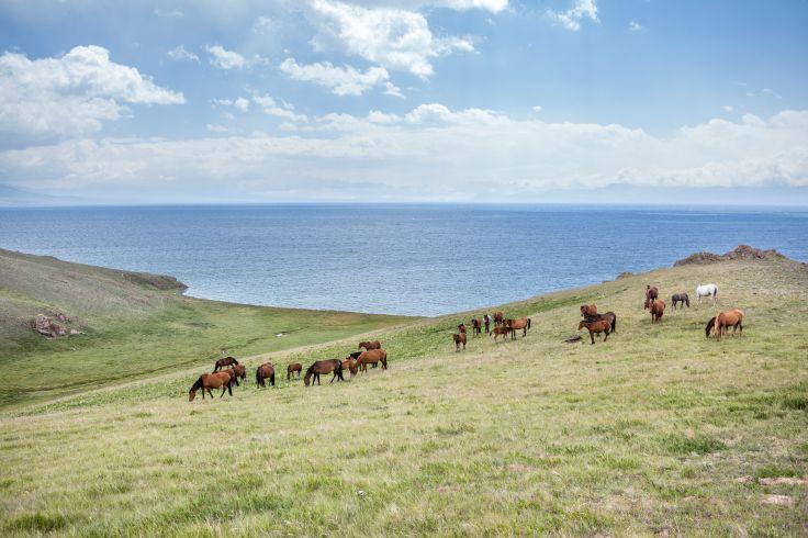Lac Son Koul - Kirghizstan