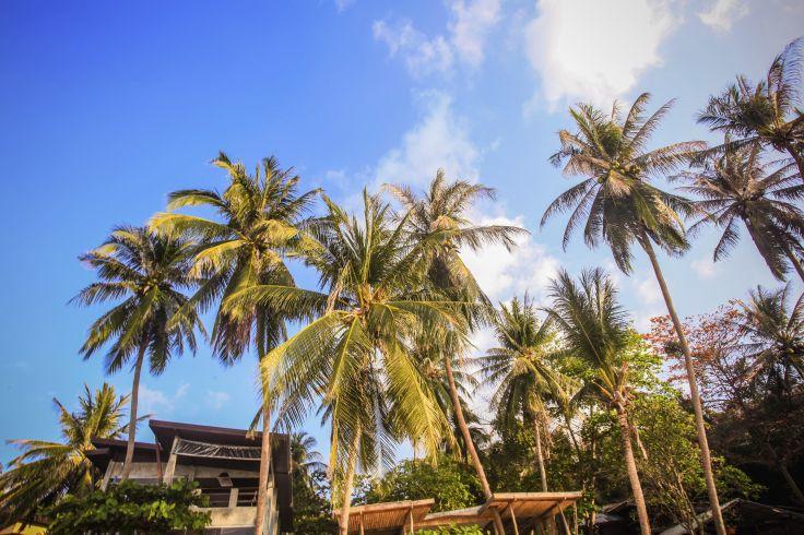 Koh Samui - Thailande