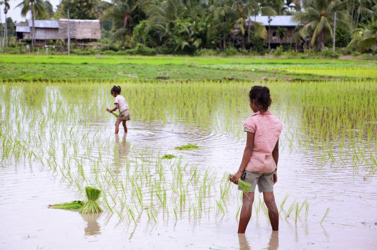 Don Khon - Si Phan Don - Laos