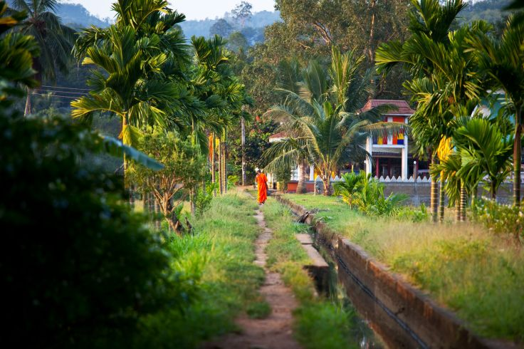 Plage, temples & plantations - Le grand tour du Sri Lanka
