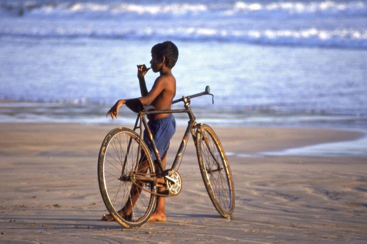 Cet hiver au Sri Lanka - Plage, temples et cerf-volant en famille