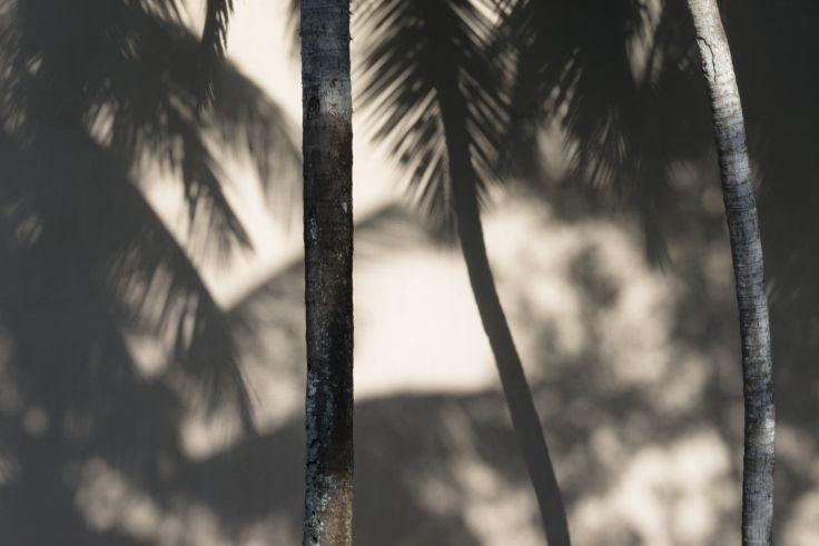 Amanwella - Tangalle - Sri Lanka